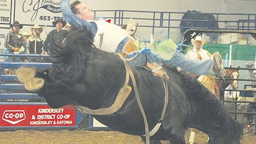 Bumping and bucking: Kindersley sets rodeo record