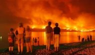 Forest fires torching a province's economy