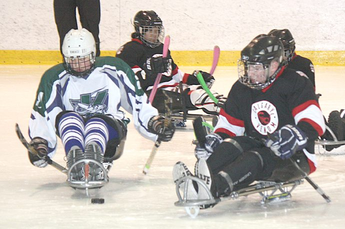 Sledge hockey tournament goes this weekend