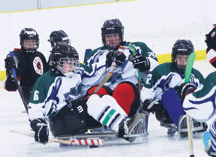Sledge hockey tournament a success