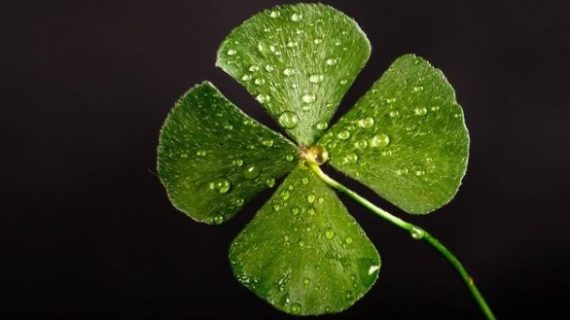 St. Patrick's Day fundraiser coming up