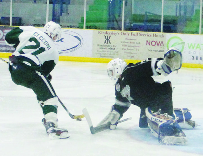 Bryson Cecconi picked up by Humboldt in SJHL dispersal draft