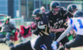 Kobras' season ends in playoff loss to Martensille
