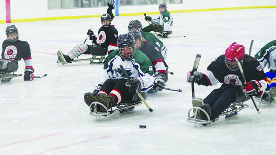 Kindersley Sledge enjoys success