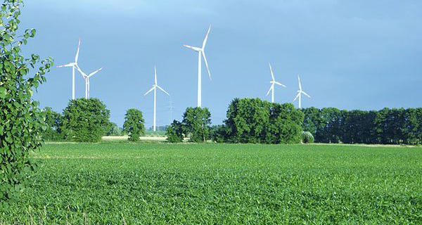 Green energy industries are impractical, destined to fail