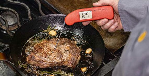 Thermapen ONE a high-tech way to check your meat temperature
